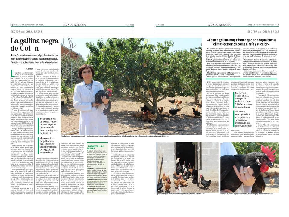 reportaje de La Gallina Castellana