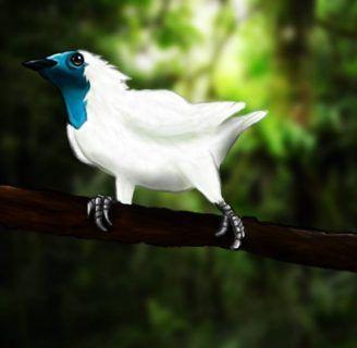 Pájaro Campana: características, alimentación, hábitat y mas.