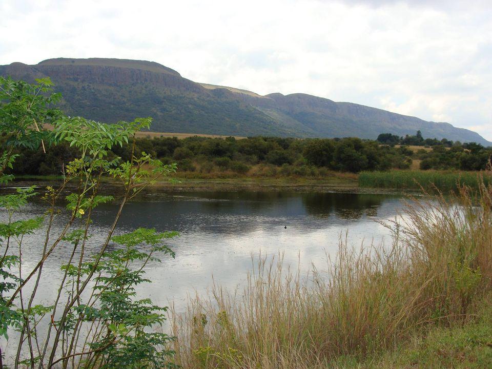 Reserva de la Biosfera Magaliesberg